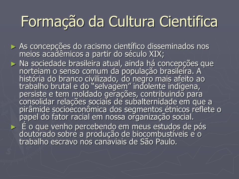Formação da Cultura Cientifica ► As concepções do racismo científico disseminados nos meios acadêmicos a partir do século XIX; ► Na sociedade brasileira atual, ainda há concepções que norteiam o senso comum da população brasileira.