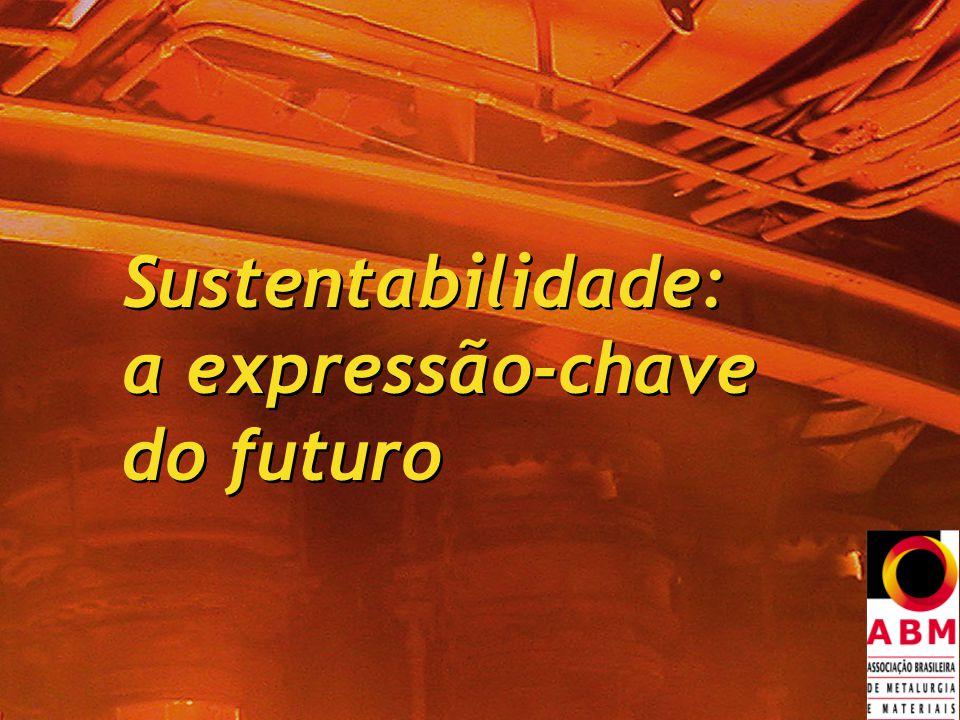 Sustentabilidade: a expressão-chave do futuro