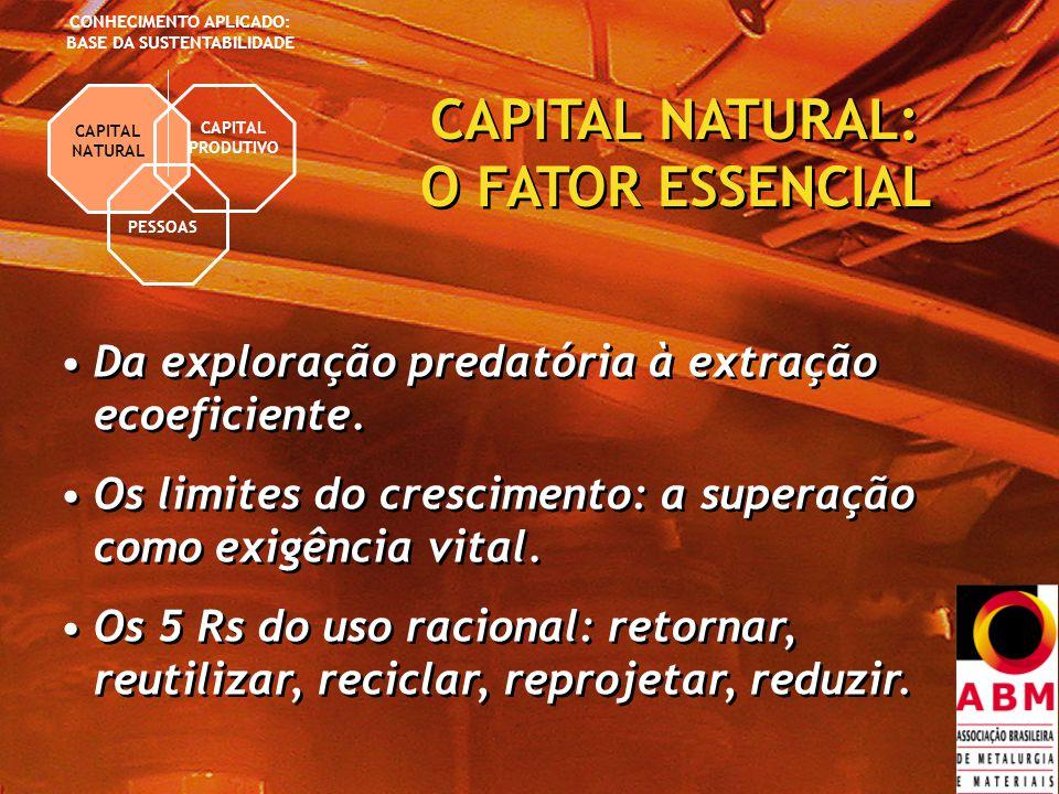 CAPITAL PRODUTIVO PESSOAS CONHECIMENTO APLICADO: BASE DA SUSTENTABILIDADE CAPITAL NATURAL CAPITAL NATURAL: O FATOR ESSENCIAL Da exploração predatória à extração ecoeficiente.