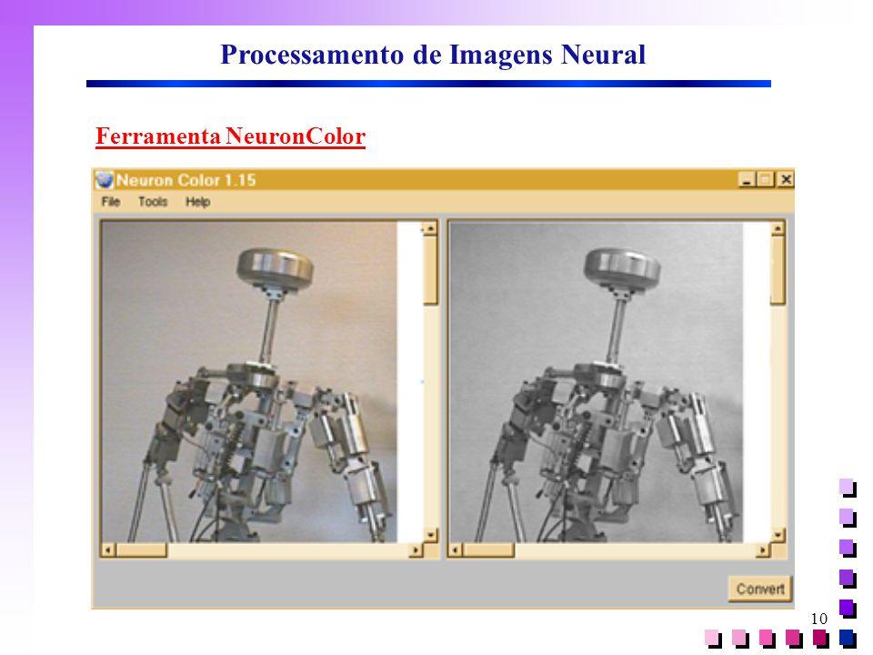 10 Processamento de Imagens Neural Ferramenta NeuronColor