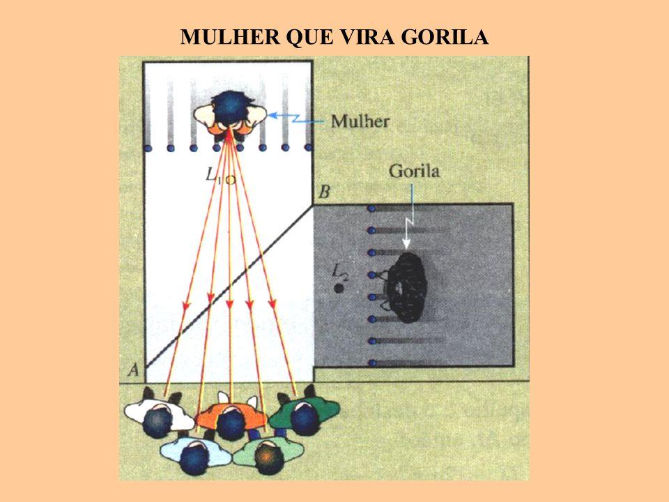 MULHER QUE VIRA GORILA