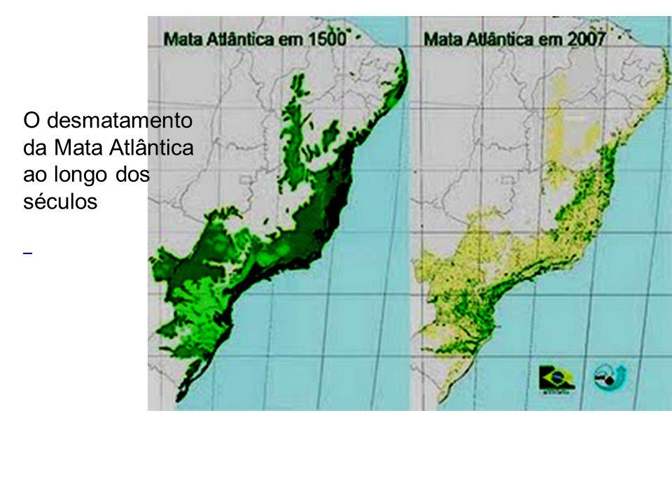 O desmatamento da Mata Atlântica ao longo dos séculos