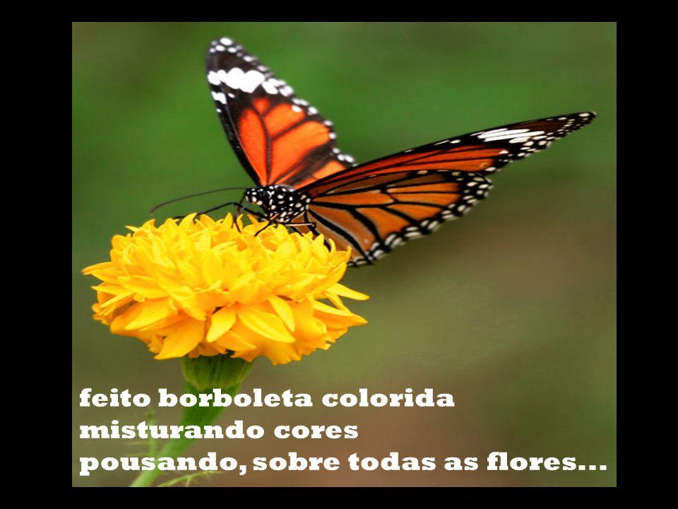 feito borboleta colorida misturando cores pousando, sobre todas as flores...