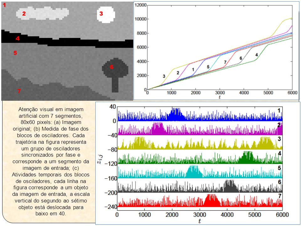 Atenção visual em imagem artificial com 7 segmentos, 80x60 pixels: (a) Imagem original; (b) Medida de fase dos blocos de osciladores.