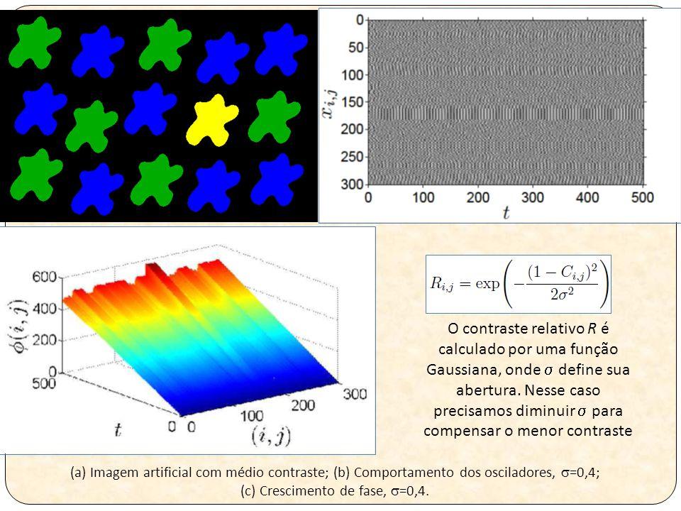 (a) Imagem artificial com médio contraste; (b) Comportamento dos osciladores,  =0,4; (c) Crescimento de fase,  =0,4.