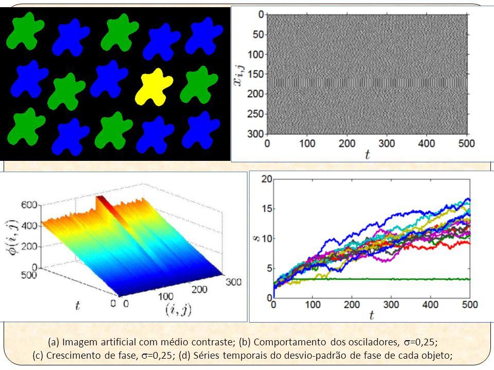 (a) Imagem artificial com médio contraste; (b) Comportamento dos osciladores,  =0,25; (c) Crescimento de fase,  =0,25; (d) Séries temporais do desvio-padrão de fase de cada objeto;