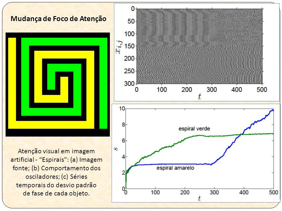 Atenção visual em imagem artificial - Espirais : (a) Imagem fonte; (b) Comportamento dos osciladores; (c) Séries temporais do desvio padrão de fase de cada objeto.