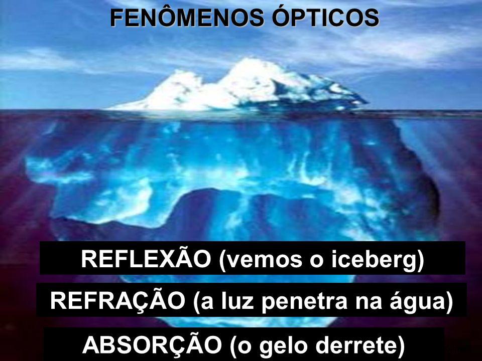 FENÔMENOS ÓPTICOS REFLEXÃO (vemos o iceberg) Gustavo Killner ABSORÇÃO (o gelo derrete) REFRAÇÃO (a luz penetra na água)