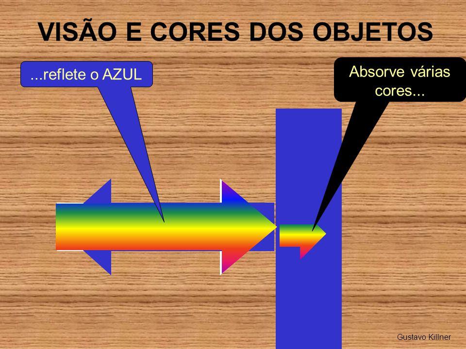 VISÃO E CORES DOS OBJETOS Absorve várias cores......reflete o AZUL