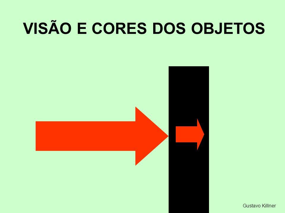Gustavo Killner VISÃO E CORES DOS OBJETOS