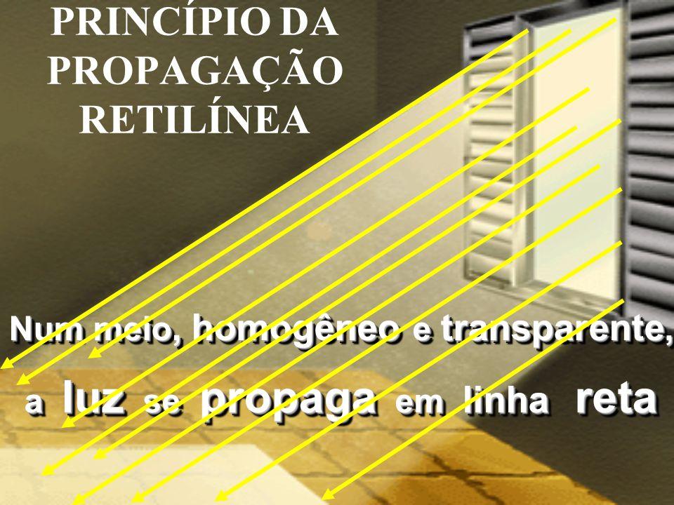 FENÔMENOS ÓPTICOS VISÃO E CORES DOS OBJETOS Gustavo Killner