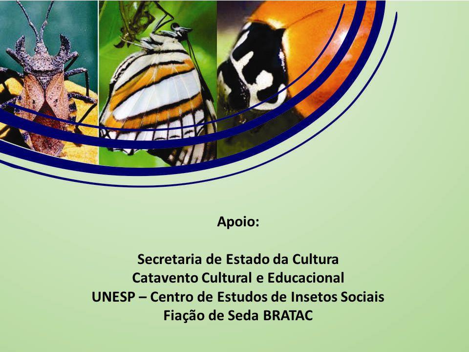 Apoio: Secretaria de Estado da Cultura Catavento Cultural e Educacional UNESP – Centro de Estudos de Insetos Sociais Fiação de Seda BRATAC