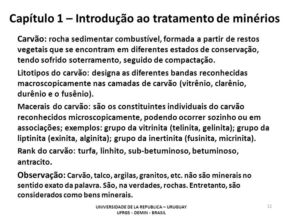 Capítulo 1 – Introdução ao tratamento de minérios Carvão: rocha sedimentar combustível, formada a partir de restos vegetais que se encontram em difere
