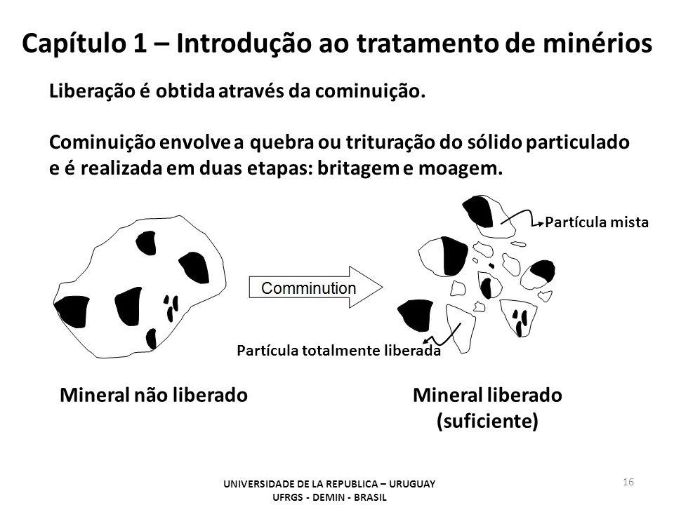 Capítulo 1 – Introdução ao tratamento de minérios 16 UNIVERSIDADE DE LA REPUBLICA – URUGUAY UFRGS - DEMIN - BRASIL Liberação é obtida através da comin