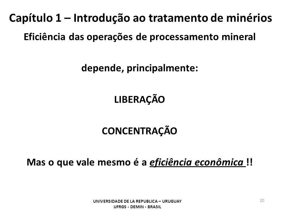 Capítulo 1 – Introdução ao tratamento de minérios 20 UNIVERSIDADE DE LA REPUBLICA – URUGUAY UFRGS - DEMIN - BRASIL Eficiência das operações de process