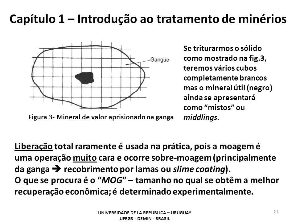 Capítulo 1 – Introdução ao tratamento de minérios 21 UNIVERSIDADE DE LA REPUBLICA – URUGUAY UFRGS - DEMIN - BRASIL Figura 3- Mineral de valor aprision