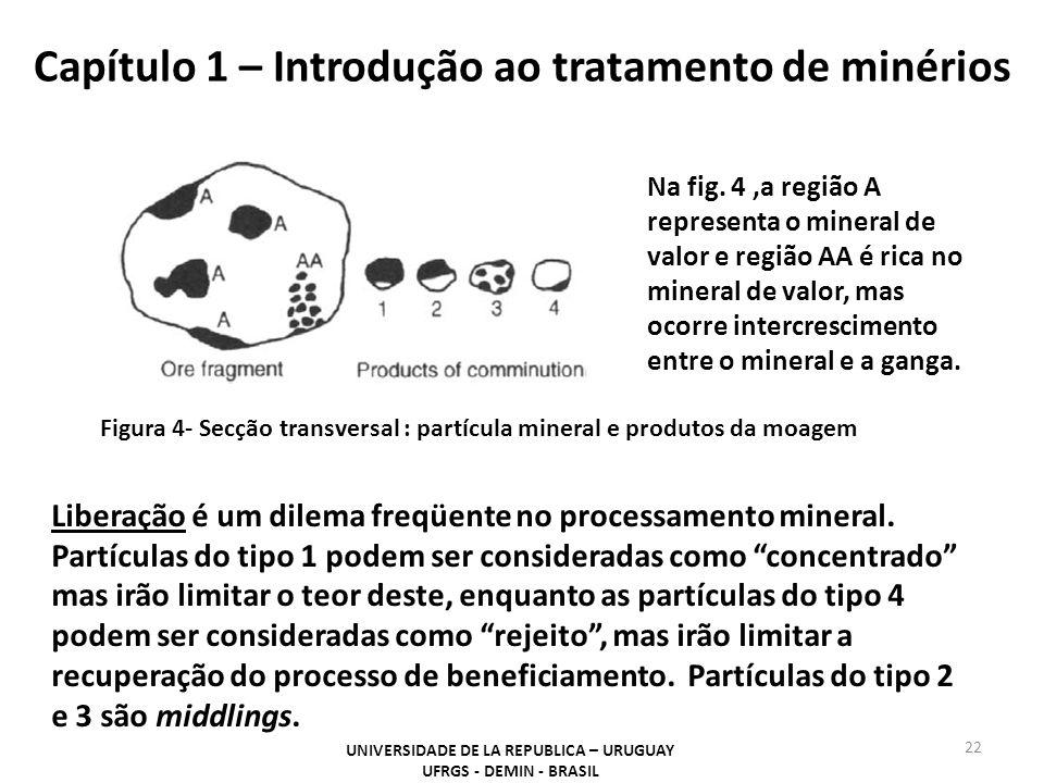 Capítulo 1 – Introdução ao tratamento de minérios 22 UNIVERSIDADE DE LA REPUBLICA – URUGUAY UFRGS - DEMIN - BRASIL Figura 4- Secção transversal : part