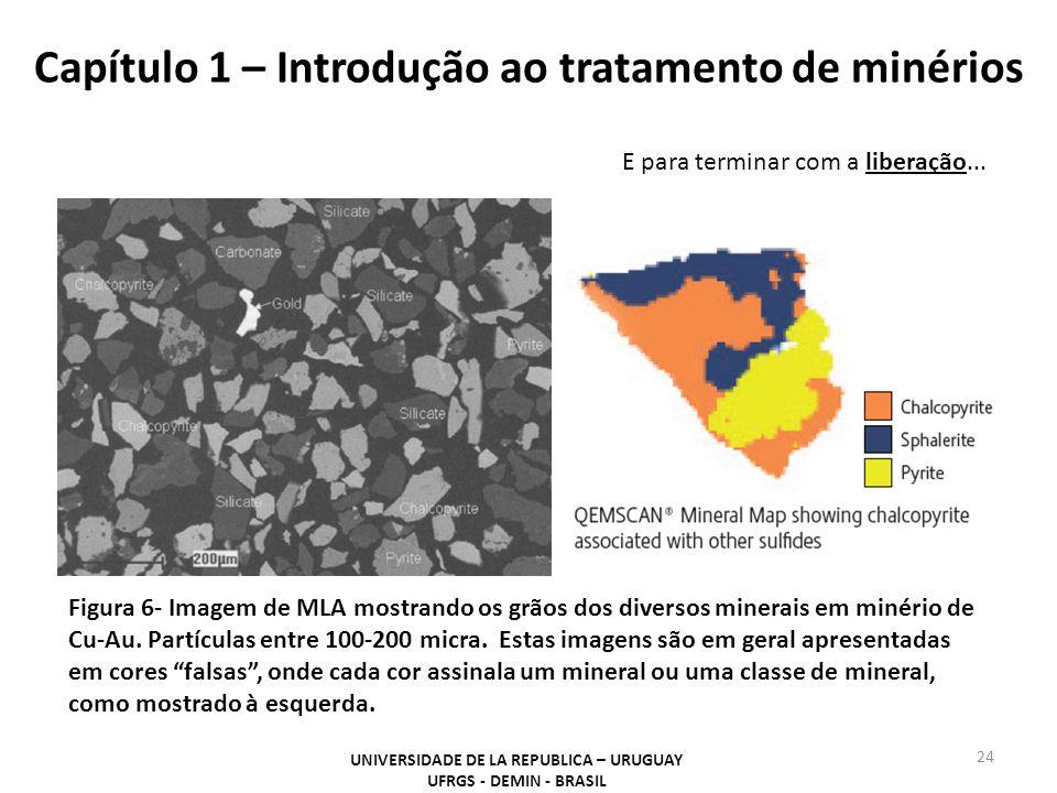 Capítulo 1 – Introdução ao tratamento de minérios 24 UNIVERSIDADE DE LA REPUBLICA – URUGUAY UFRGS - DEMIN - BRASIL Figura 6- Imagem de MLA mostrando o