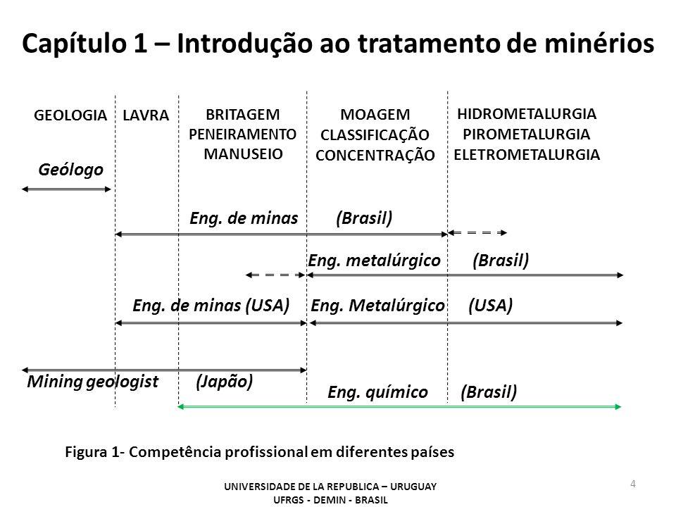Capítulo 1 – Introdução ao tratamento de minérios 4 GEOLOGIALAVRA BRITAGEM PENEIRAMENTO MANUSEIO MOAGEM CLASSIFICAÇÃO CONCENTRAÇÃO HIDROMETALURGIA PIR