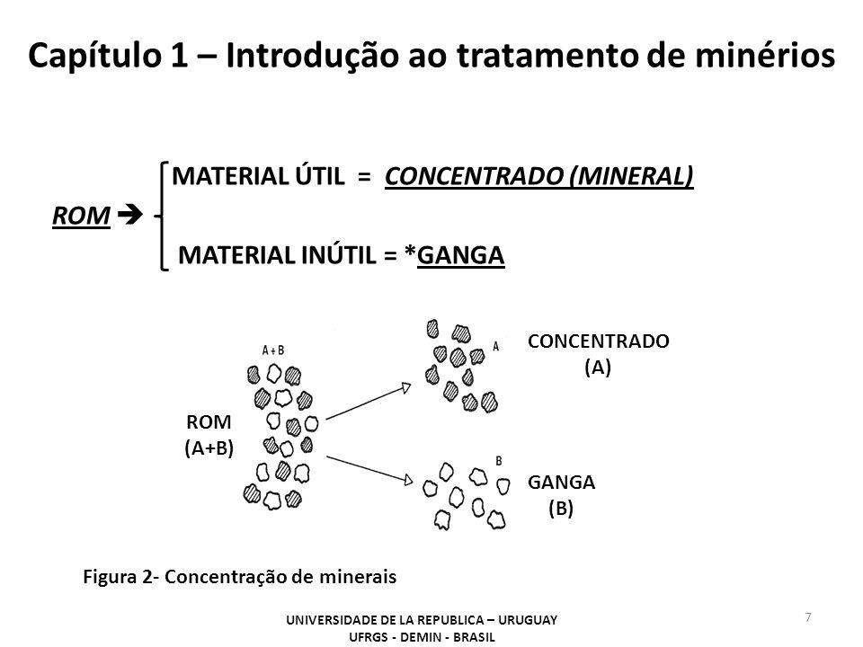 Capítulo 1 – Introdução ao tratamento de minérios MATERIAL ÚTIL = CONCENTRADO (MINERAL) ROM  MATERIAL INÚTIL = *GANGA 7 UNIVERSIDADE DE LA REPUBLICA