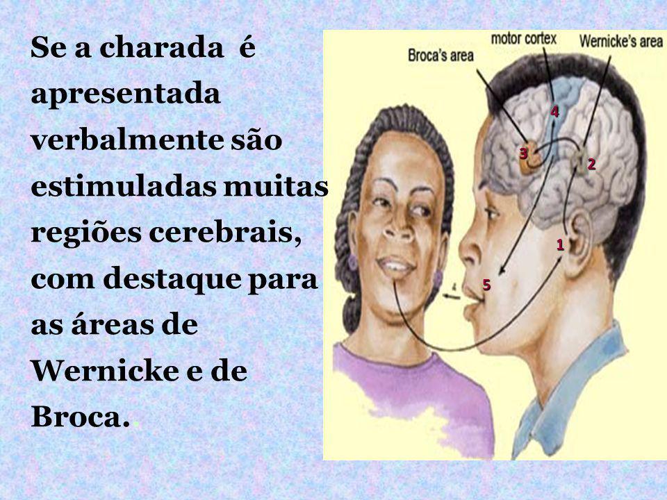 Se a charada é apresentada verbalmente são estimuladas muitas regiões cerebrais, com destaque para as áreas de Wernicke e de Broca..