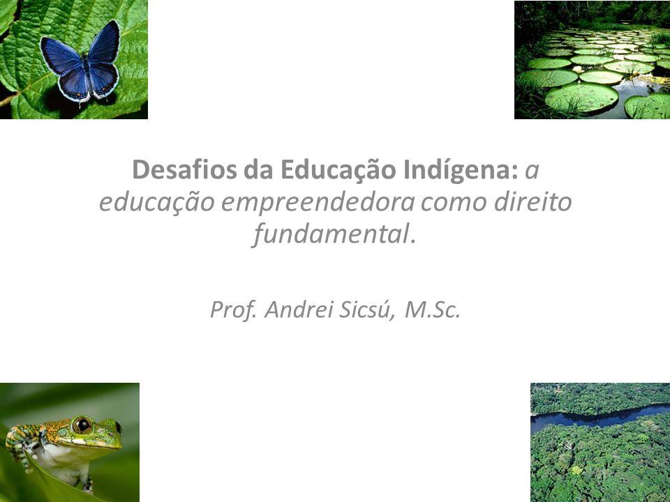 Desafios da Educação Indígena: a educação empreendedora como direito fundamental. Prof. Andrei Sicsú, M.Sc. 1