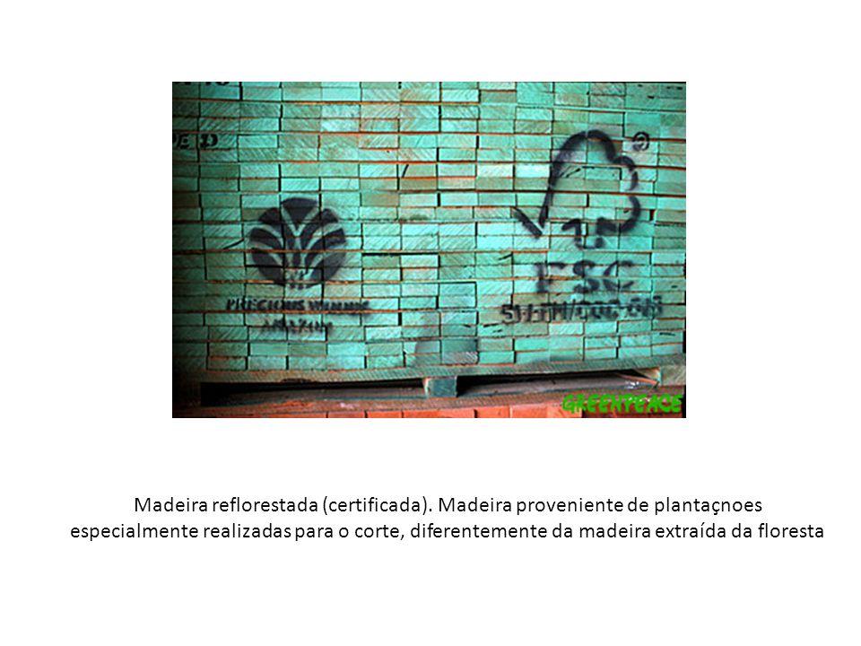 Madeira reflorestada (certificada). Madeira proveniente de plantaçnoes especialmente realizadas para o corte, diferentemente da madeira extraída da fl