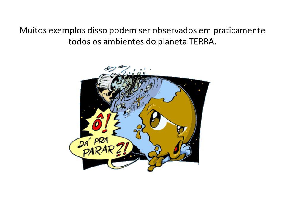 Muitos exemplos disso podem ser observados em praticamente todos os ambientes do planeta TERRA.