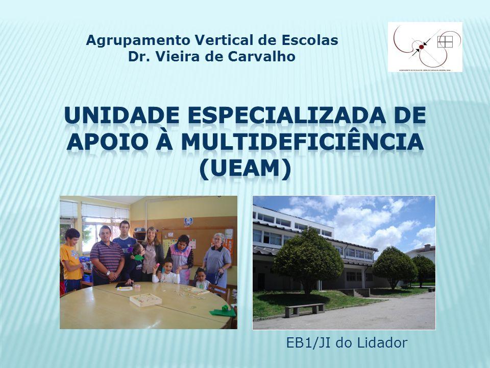 EB1/JI do Lidador Agrupamento Vertical de Escolas Dr. Vieira de Carvalho