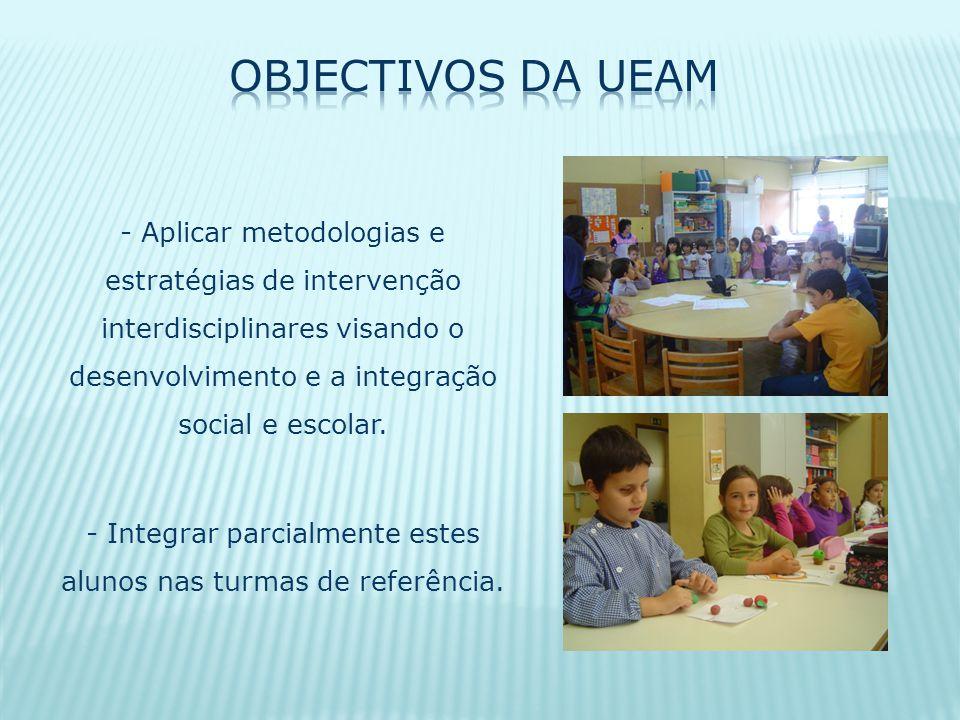 - Aplicar metodologias e estratégias de intervenção interdisciplinares visando o desenvolvimento e a integração social e escolar. - Integrar parcialme