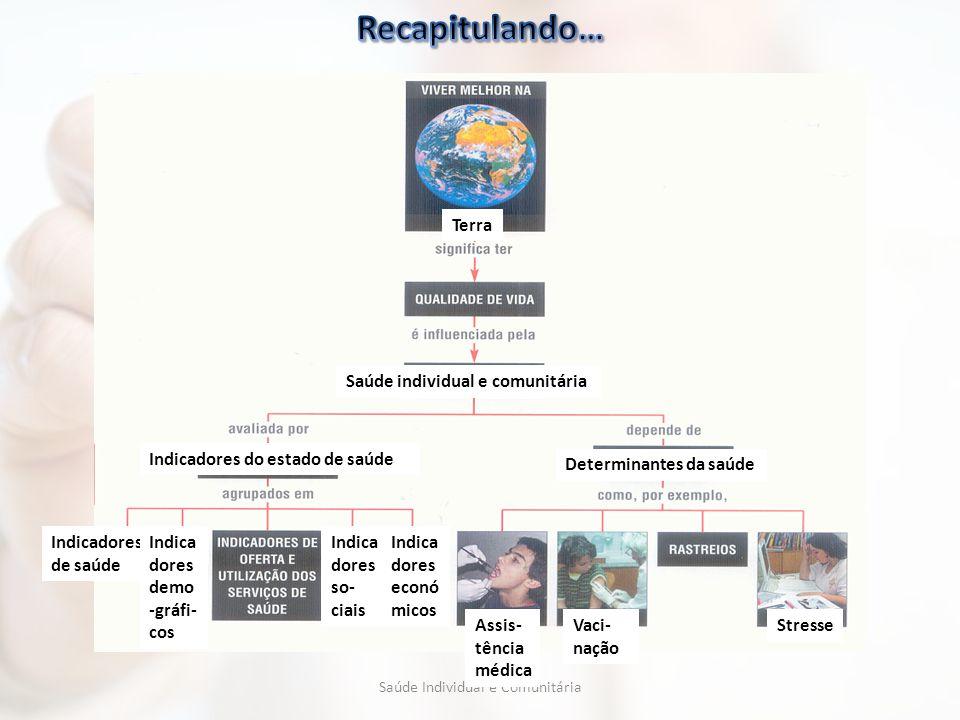 Terra Saúde individual e comunitária Indicadores do estado de saúde Determinantes da saúde Indicadores de saúde Indica dores demo -gráfi- cos Indica d