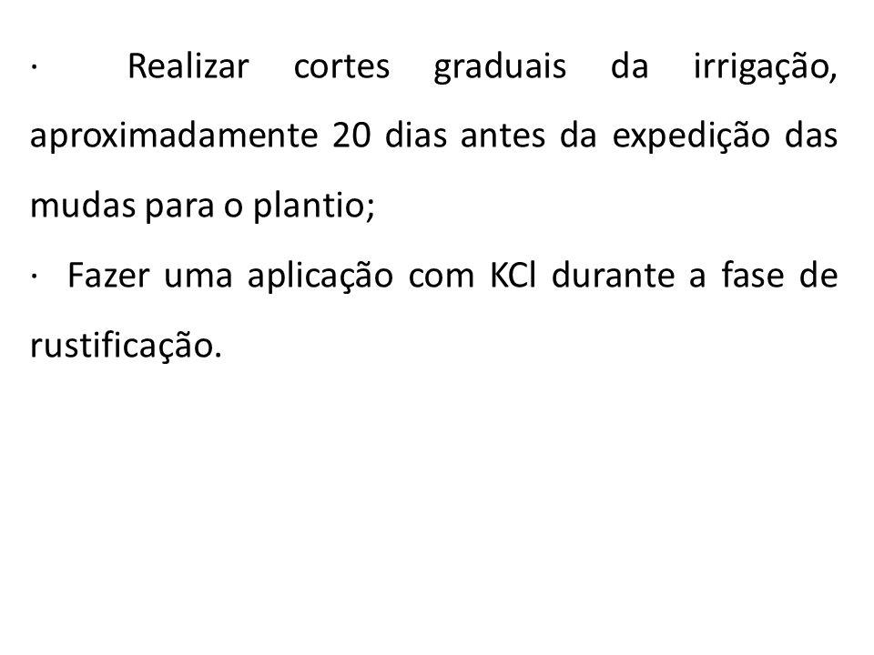· Realizar cortes graduais da irrigação, aproximadamente 20 dias antes da expedição das mudas para o plantio; · Fazer uma aplicação com KCl durante a