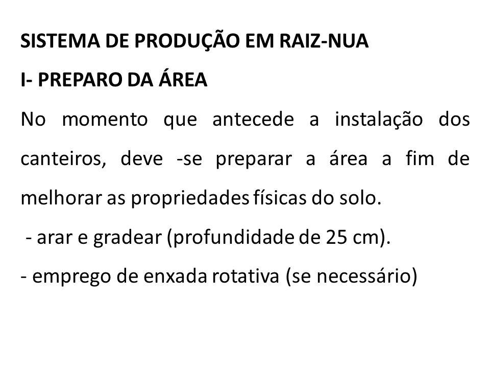 SISTEMA DE PRODUÇÃO EM RAIZ-NUA I- PREPARO DA ÁREA No momento que antecede a instalação dos canteiros, deve -se preparar a área a fim de melhorar as p