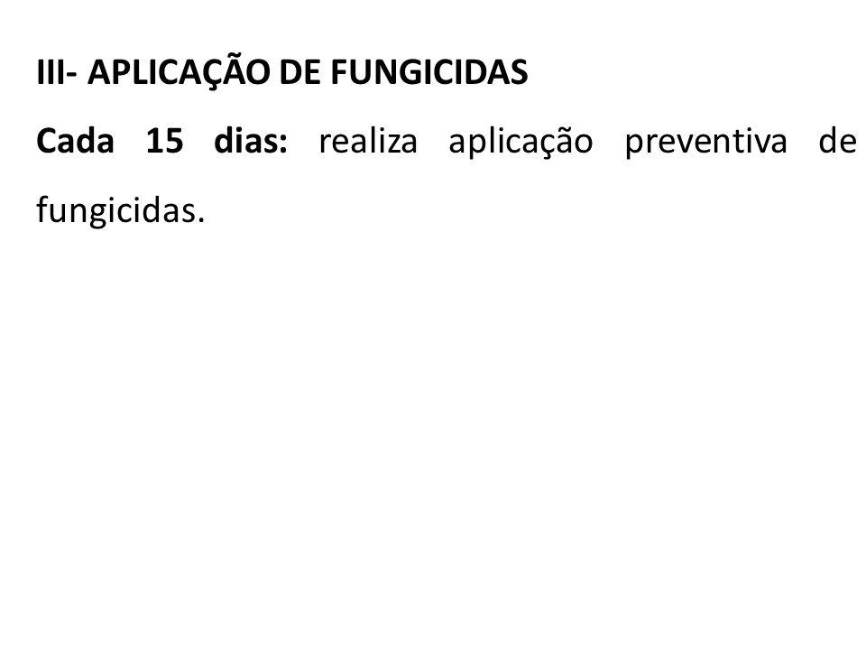 III- APLICAÇÃO DE FUNGICIDAS Cada 15 dias: realiza aplicação preventiva de fungicidas.