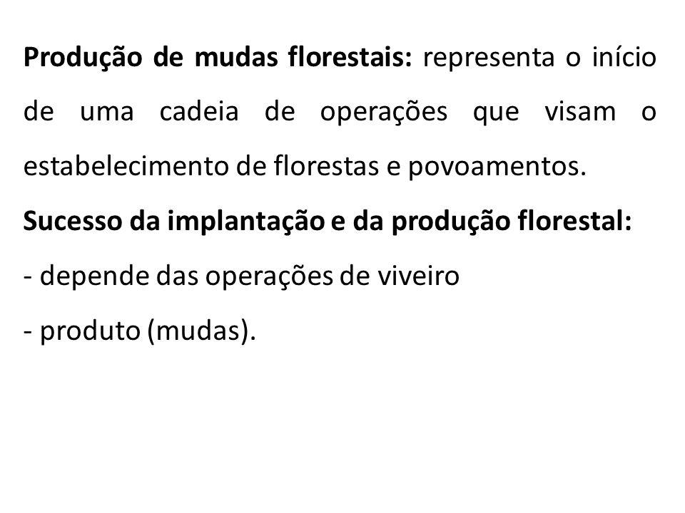 Produção de mudas florestais: representa o início de uma cadeia de operações que visam o estabelecimento de florestas e povoamentos. Sucesso da implan