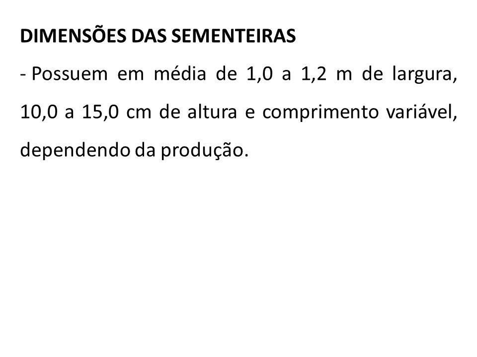 DIMENSÕES DAS SEMENTEIRAS - Possuem em média de 1,0 a 1,2 m de largura, 10,0 a 15,0 cm de altura e comprimento variável, dependendo da produção.