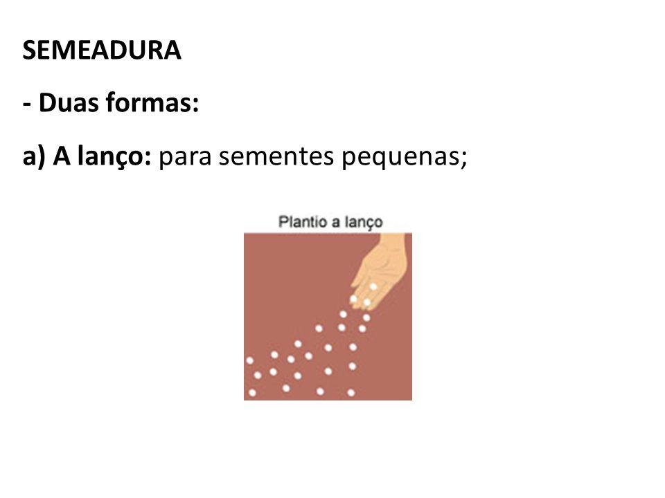 SEMEADURA - Duas formas: a) A lanço: para sementes pequenas;