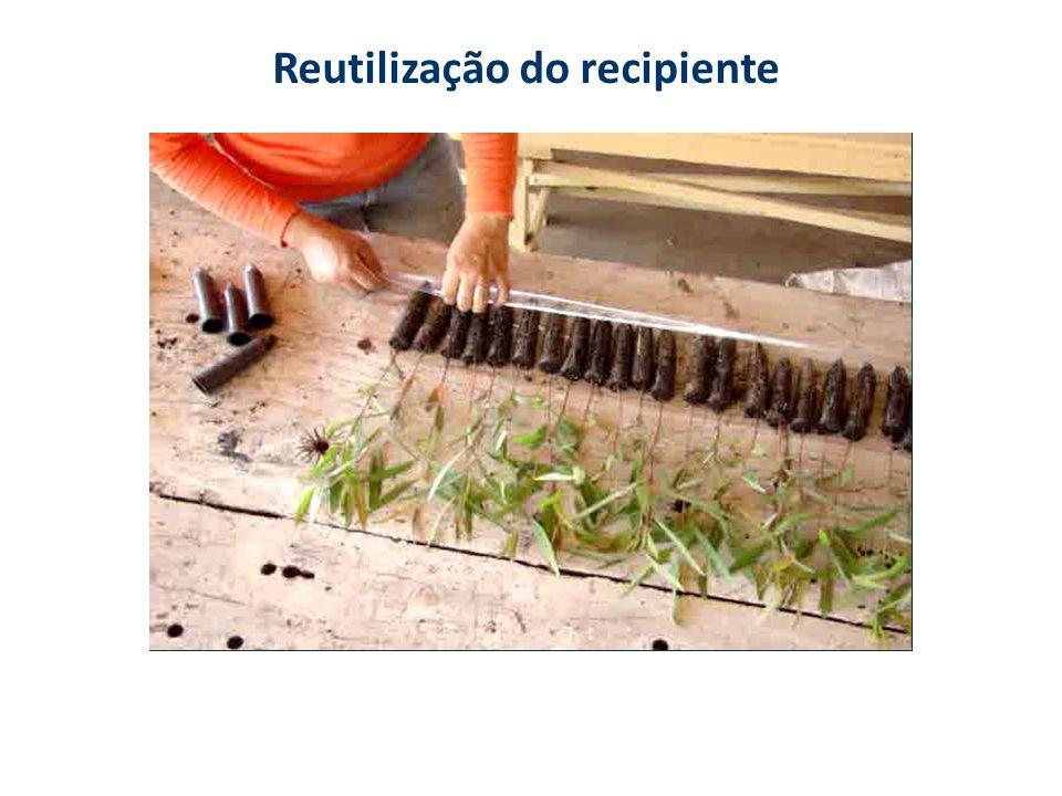 Reutilização do recipiente