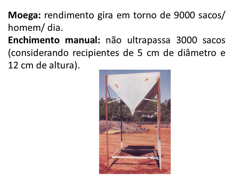 Moega: rendimento gira em torno de 9000 sacos/ homem/ dia. Enchimento manual: não ultrapassa 3000 sacos (considerando recipientes de 5 cm de diâmetro