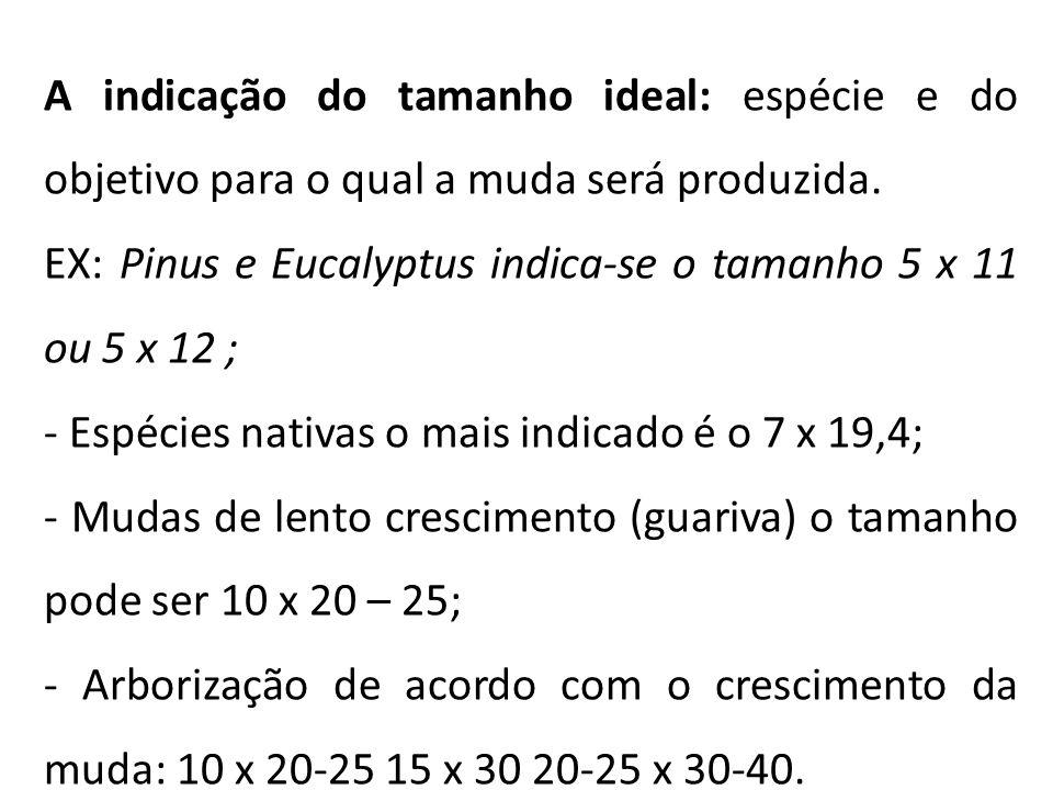 A indicação do tamanho ideal: espécie e do objetivo para o qual a muda será produzida. EX: Pinus e Eucalyptus indica-se o tamanho 5 x 11 ou 5 x 12 ; -