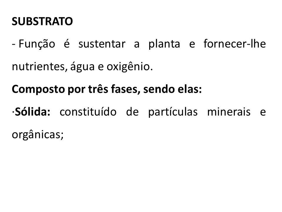 SUBSTRATO - Função é sustentar a planta e fornecer-lhe nutrientes, água e oxigênio. Composto por três fases, sendo elas: ·Sólida: constituído de partí