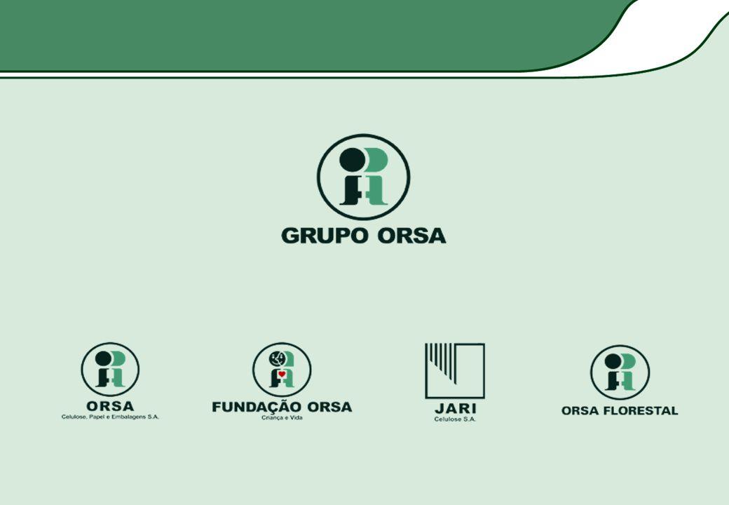 Programa de Formação de Profissionais de Educação Infantil -1594 profissionais capacitados até 2004; -Implementado em 15 municípios de Alagoas, Bahia, São Paulo e Amapá.