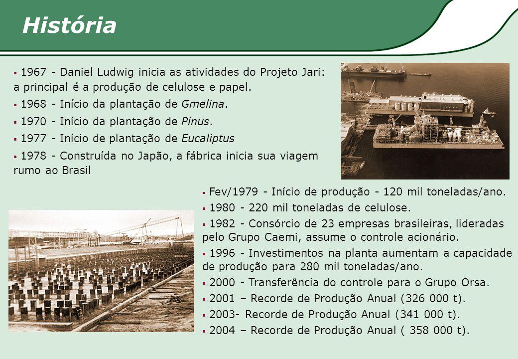 História  Fev/1979 - Início de produção - 120 mil toneladas/ano.  1980 - 220 mil toneladas de celulose.  1982 - Consórcio de 23 empresas brasileira