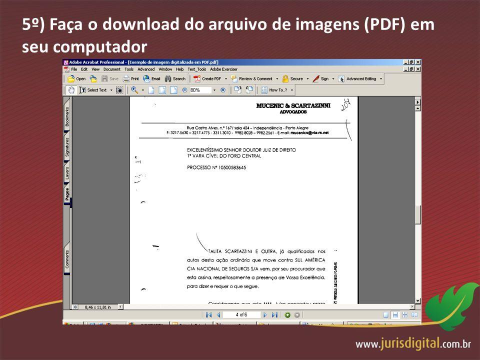 5º) Faça o download do arquivo de imagens (PDF) em seu computador