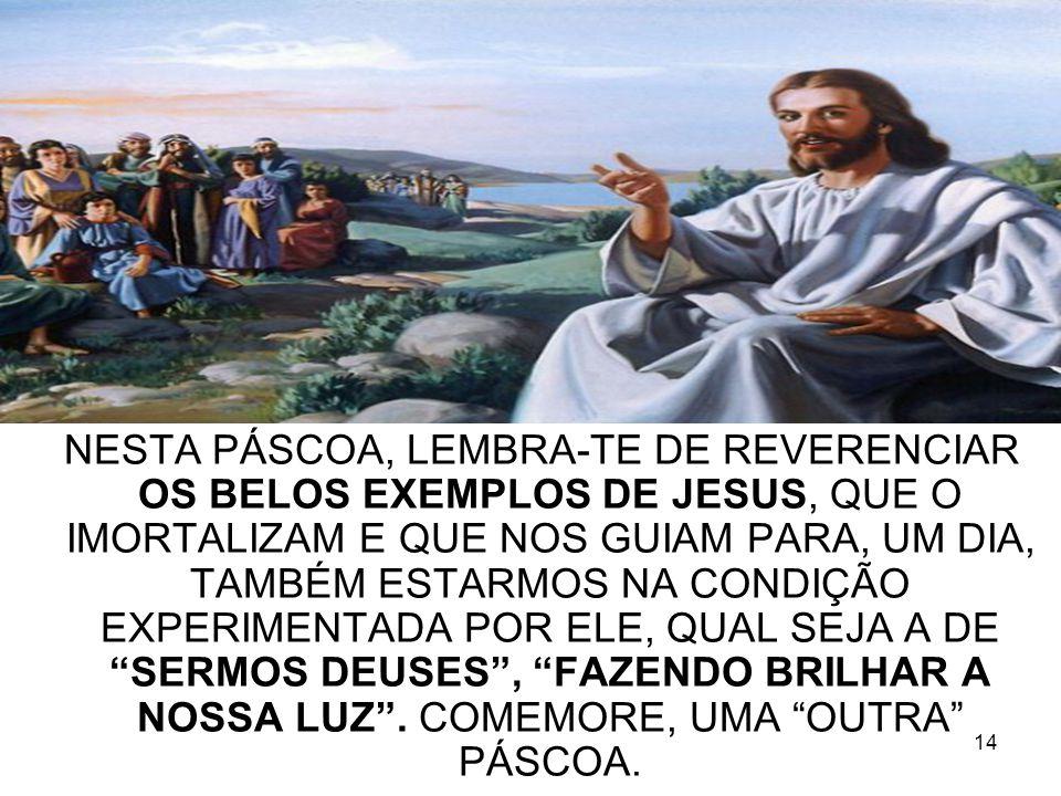 14 NESTA PÁSCOA, LEMBRA-TE DE REVERENCIAR OS BELOS EXEMPLOS DE JESUS, QUE O IMORTALIZAM E QUE NOS GUIAM PARA, UM DIA, TAMBÉM ESTARMOS NA CONDIÇÃO EXPE