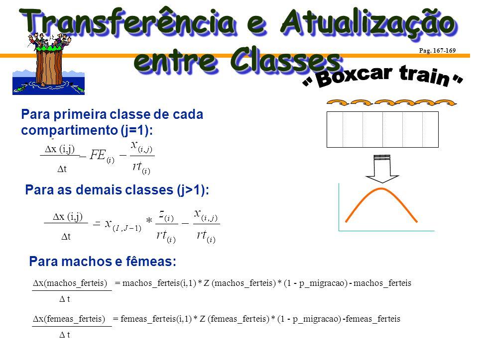 Transferência e Atualização entre Classes Para primeira classe de cada compartimento (j=1): Para as demais classes (j>1): Para machos e fêmeas: Pag. 1