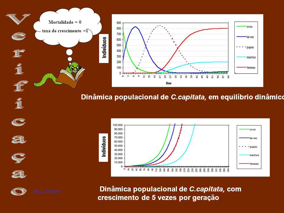 Dinâmica populacional de C.capitata, em equilíbrio dinâmico Dinâmica populacional de C.capitata, com crescimento de 5 vezes por geração Mortalidade =