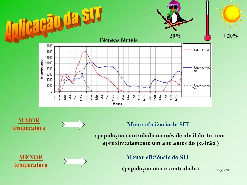 + 20%- 20% MAIOR temperatura Maior eficiência da SIT - (população controlada no mês de abril do 1o. ano, aproximadamente um ano antes do padrão ) MENO