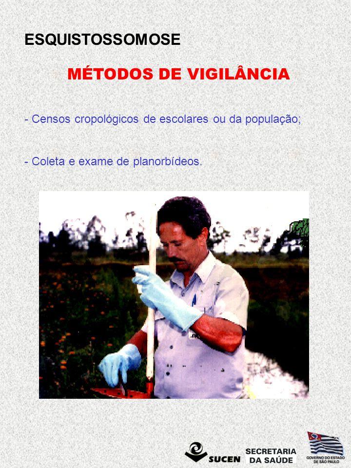 ESQUISTOSSOMOSE MÉTODOS DE VIGILÂNCIA - Censos cropológicos de escolares ou da população; - Coleta e exame de planorbídeos.