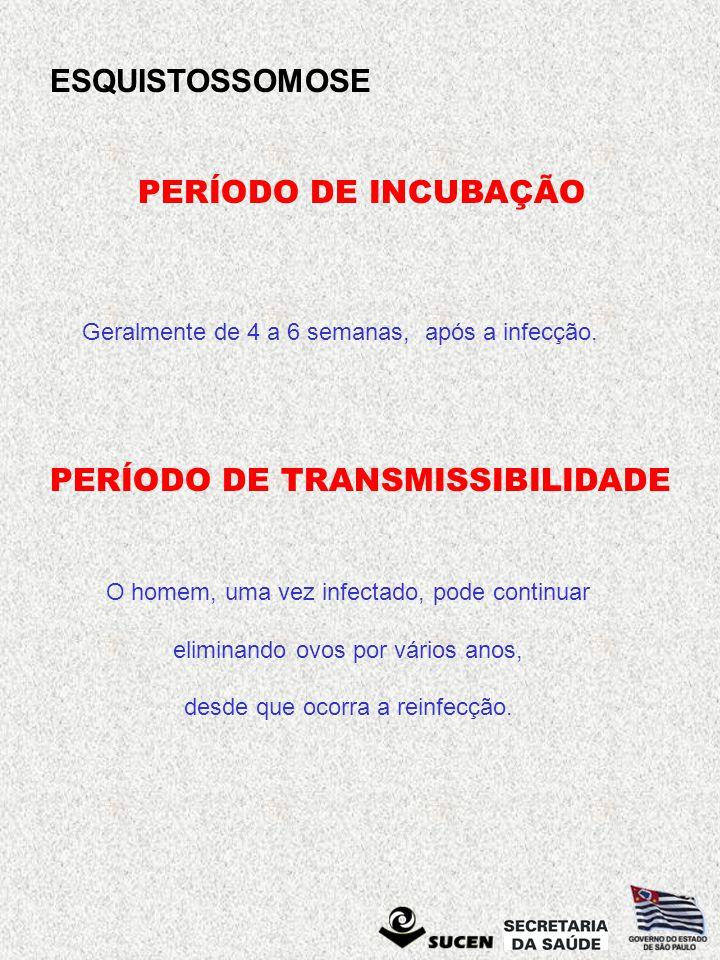 ESQUISTOSSOMOSE VERMES ADULTOS No Brasil, o agente causador da esquistossomose é o Schistosoma mansoni.